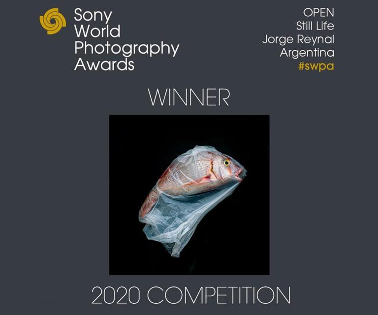 "Ganador Premio ""Still Life - SWPA 2020"""